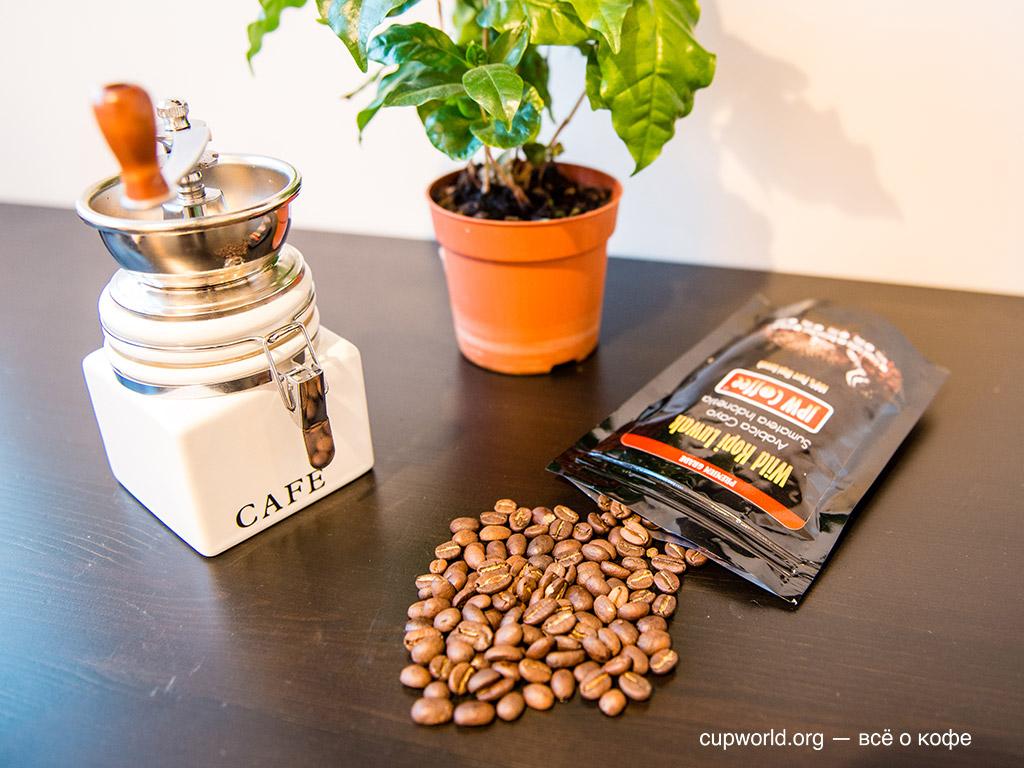 Ароматный кофе Kopi Luwak